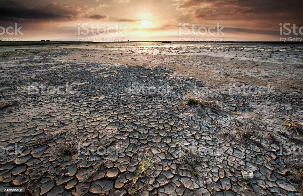 cracked mud on Wadden sea at low tide at sunrise stock photo