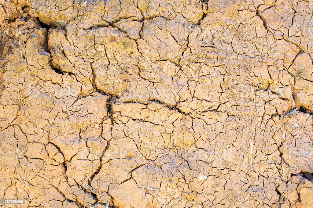 Cracked pattern on Dried Land stock photo