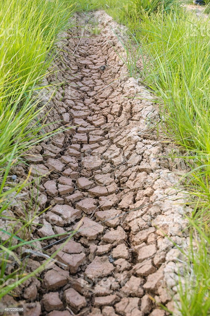 Cracked soil rural road and fresh green grass stock photo