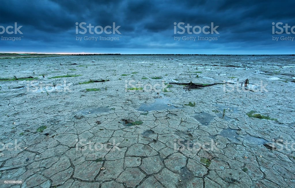 cracked Wadden sea coast in summer at low tide stock photo