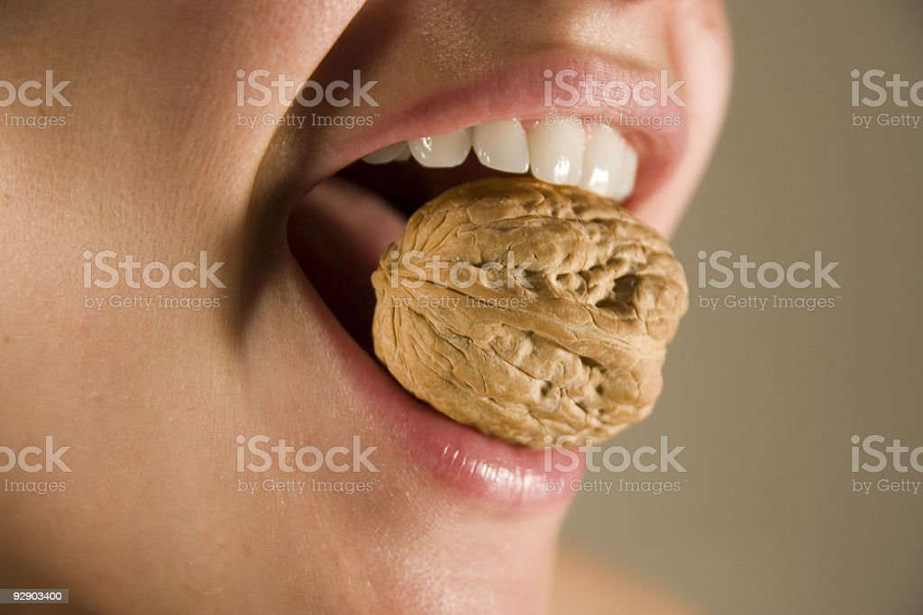 cracking walnut stock photo