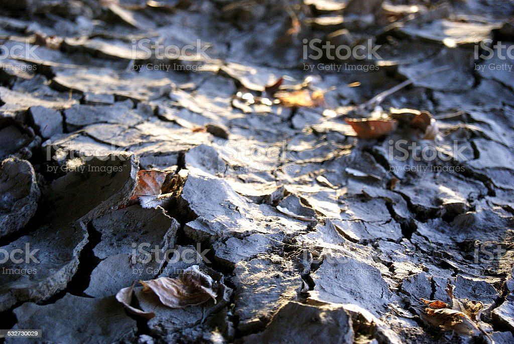 Crackled Earth royalty-free stock photo
