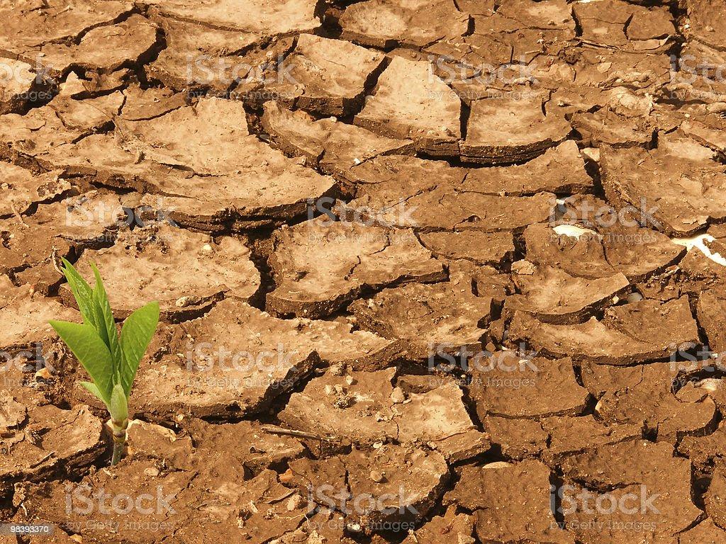 Cracks   ground royalty-free stock photo