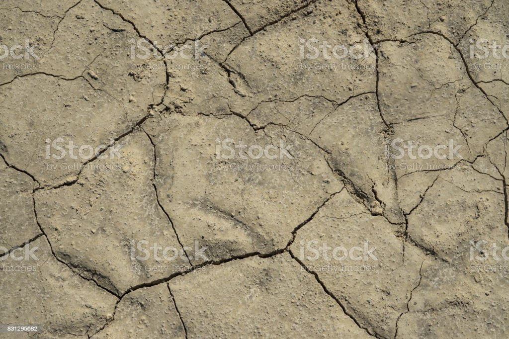 Cracks in the ground. Drought background stock photo