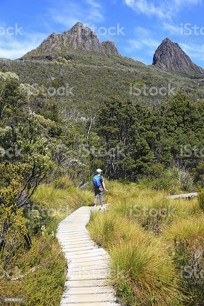 Cradle Mountain wilderness walk with hiker stock photo