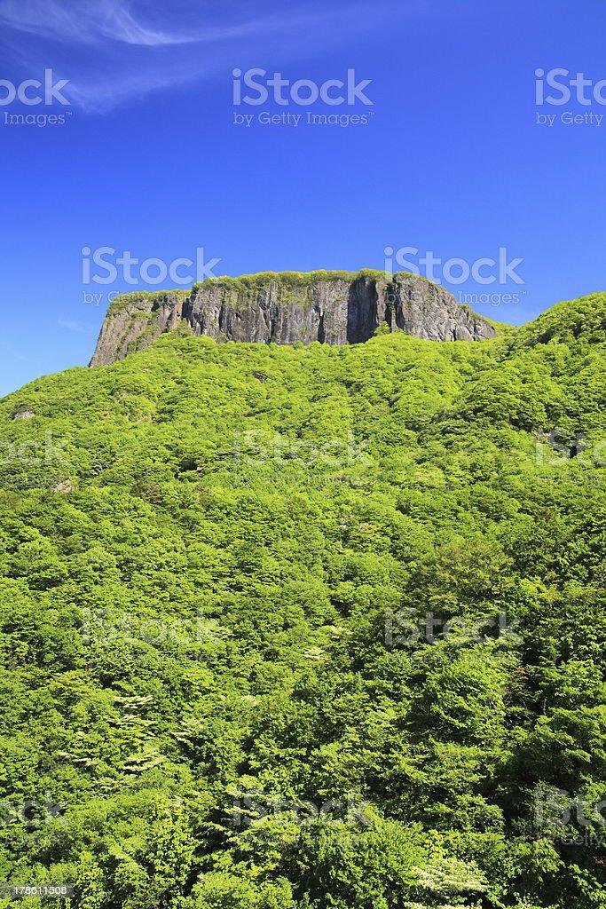 Crag mountain with fresh verdure royalty-free stock photo