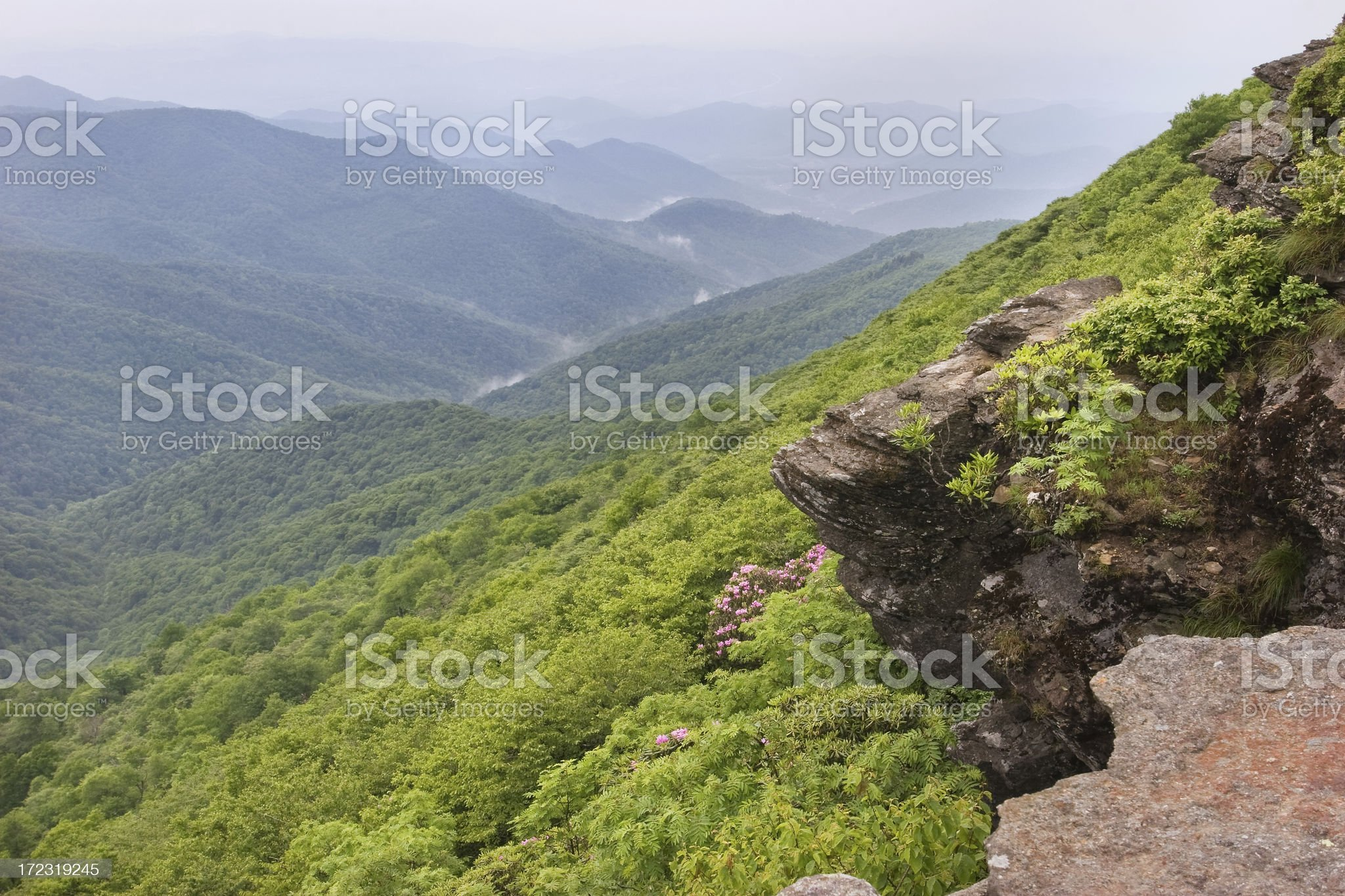 Craggy Overlook royalty-free stock photo