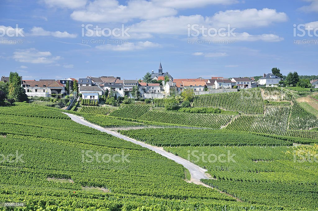 Cramant,Champagne region,France stock photo