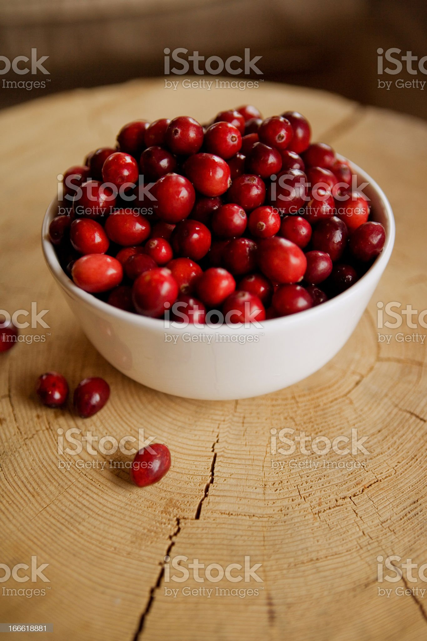 cranberries at the cottage royalty-free stock photo