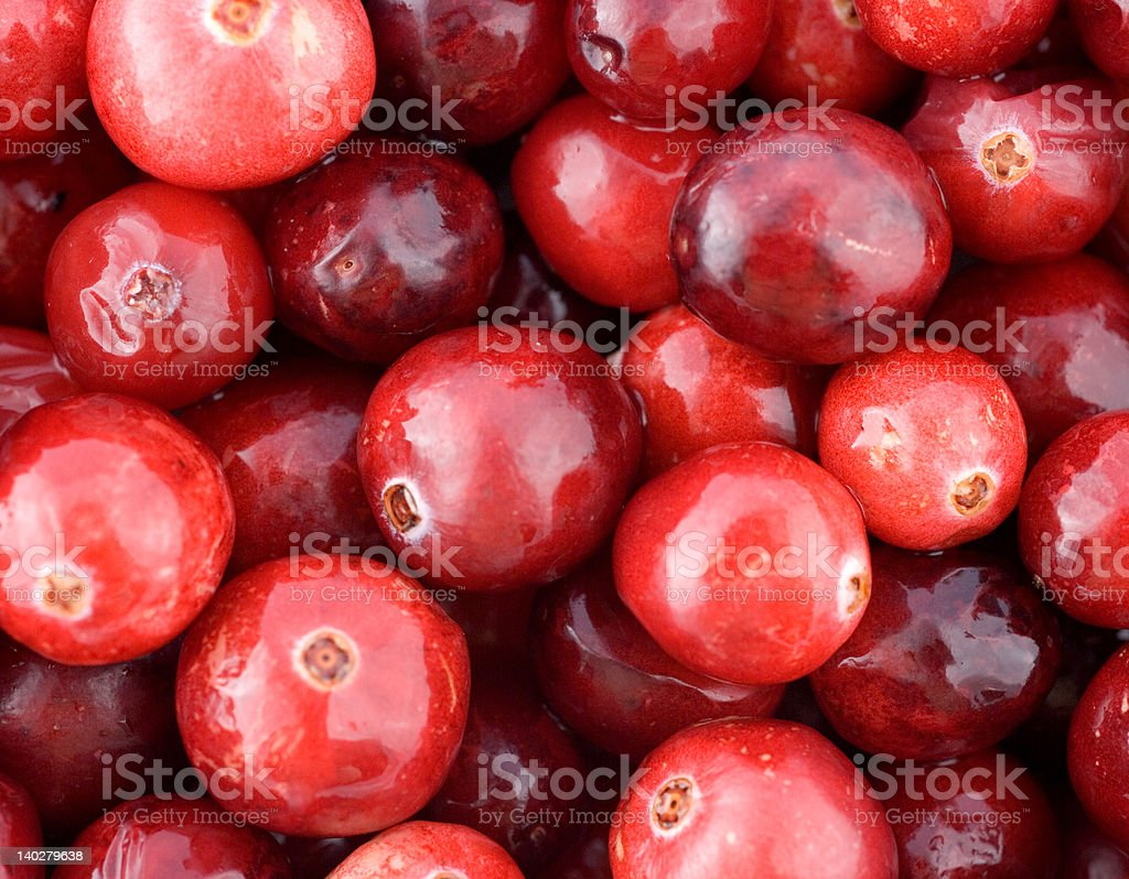 cranberries close-up royalty-free stock photo