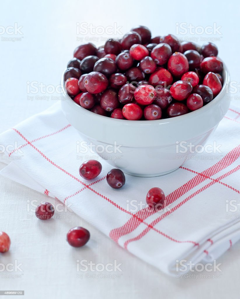 cranberries in white bowl stock photo