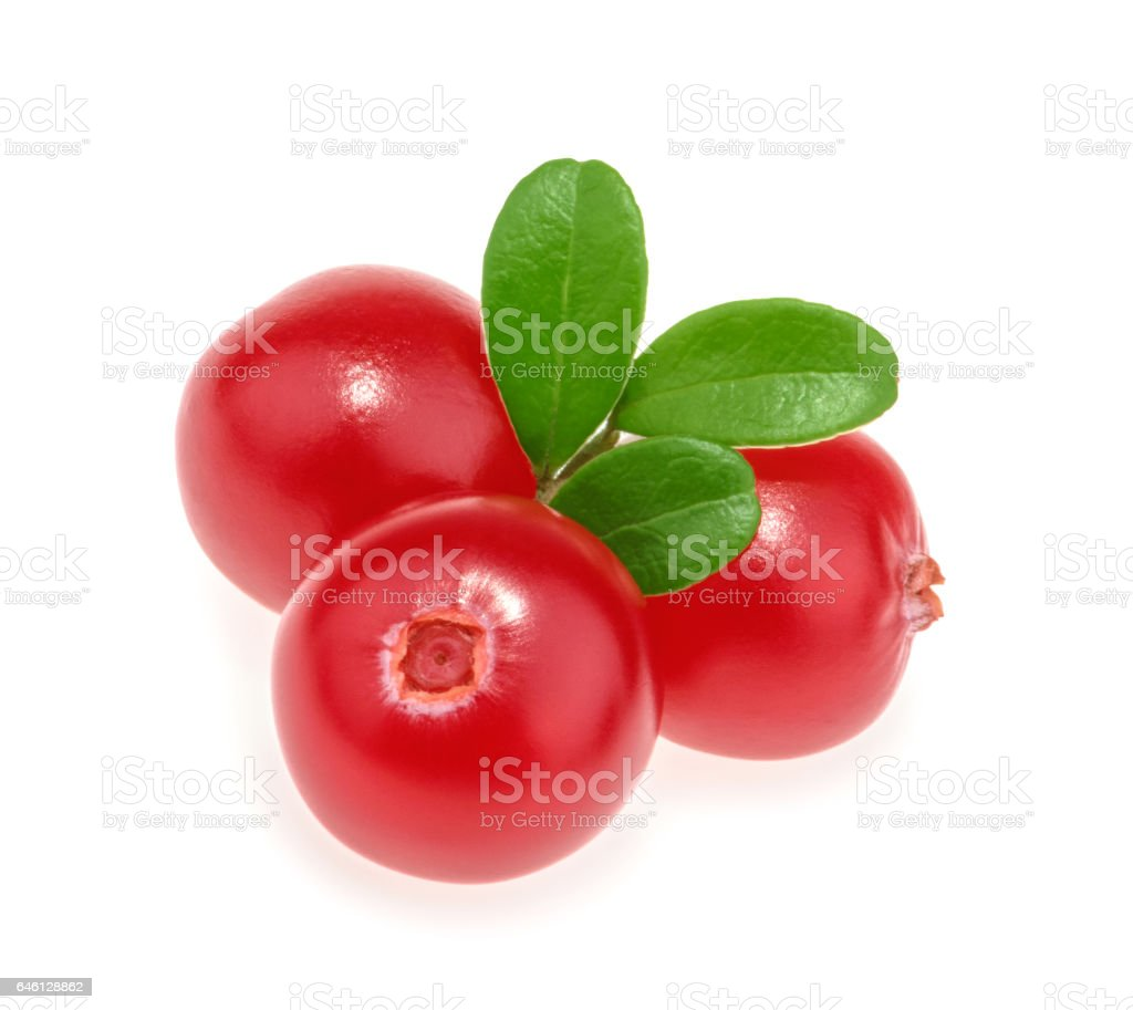 Cranberries isolated on white background stock photo
