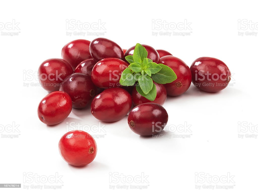 Cranberries with Leafs royalty-free stock photo