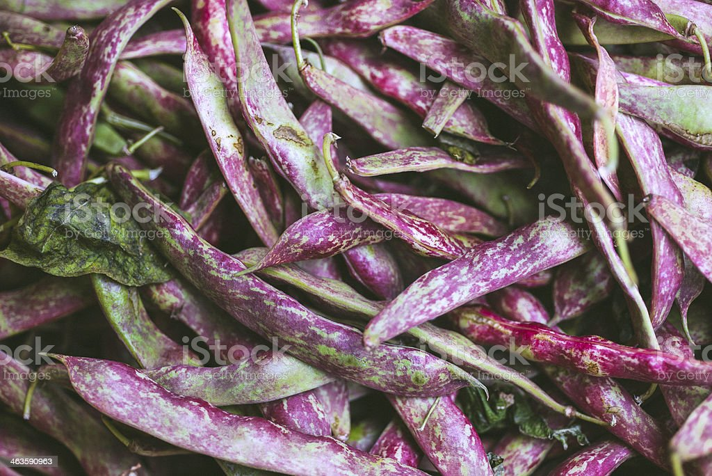Cranberry Beans royalty-free stock photo