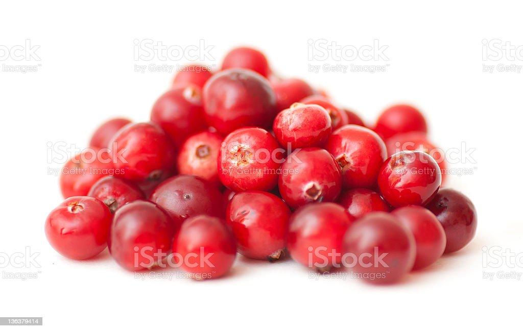 Cranberry on white royalty-free stock photo