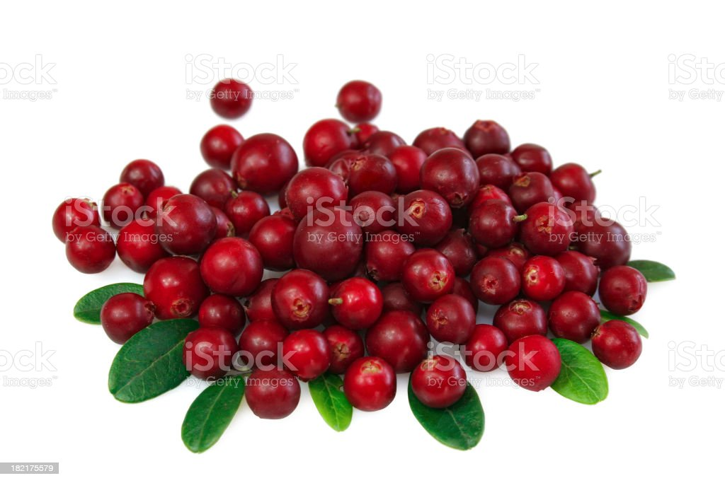 Cranberry royalty-free stock photo
