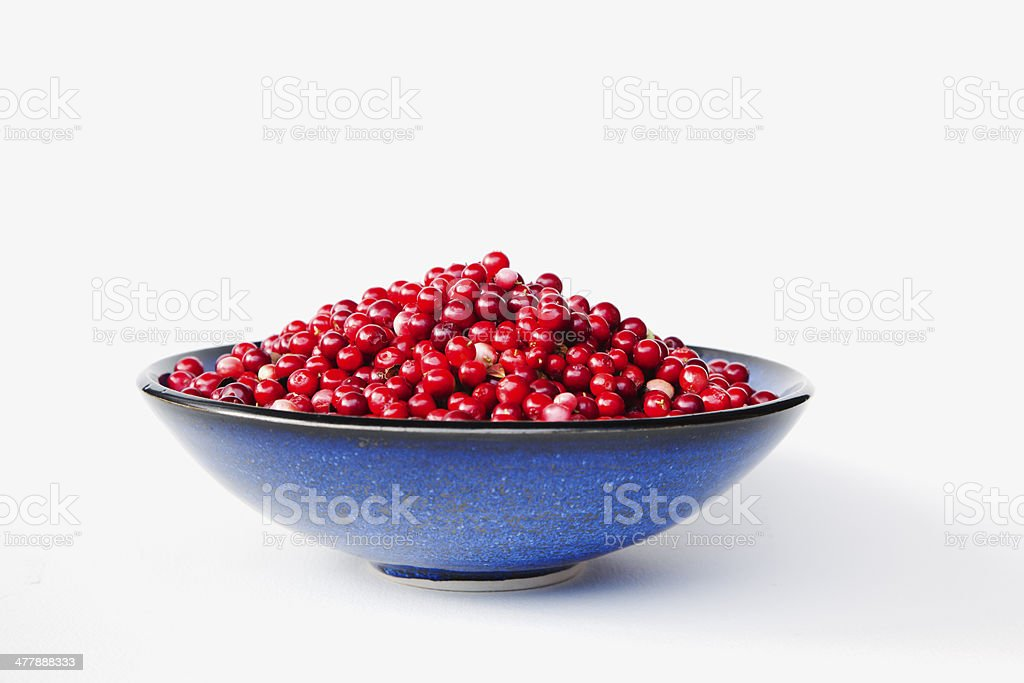 Cranberry. royalty-free stock photo