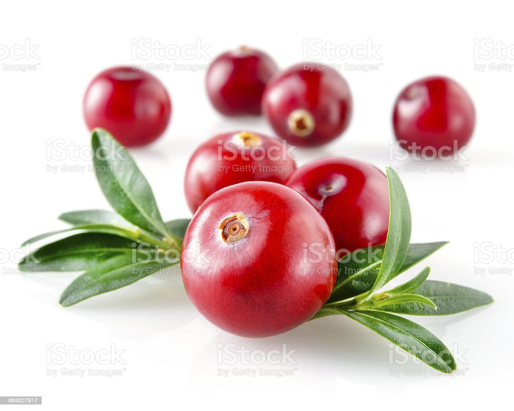 Cranberry with leaves isolated on white background stock photo