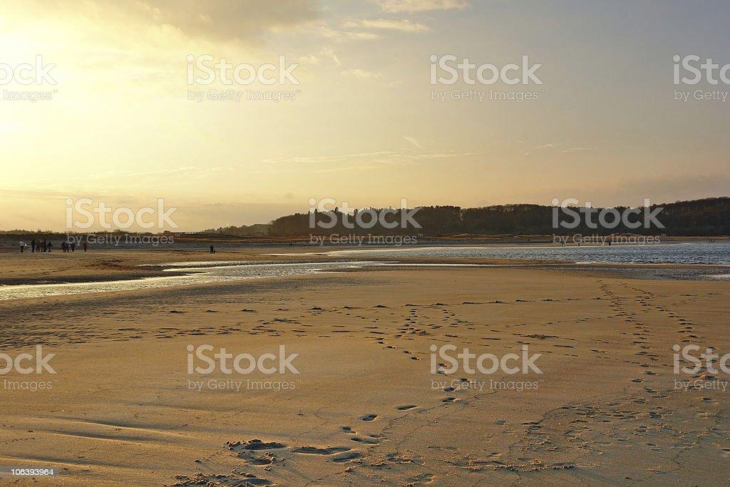 Crane Beach illuminated by the evening sun royalty-free stock photo