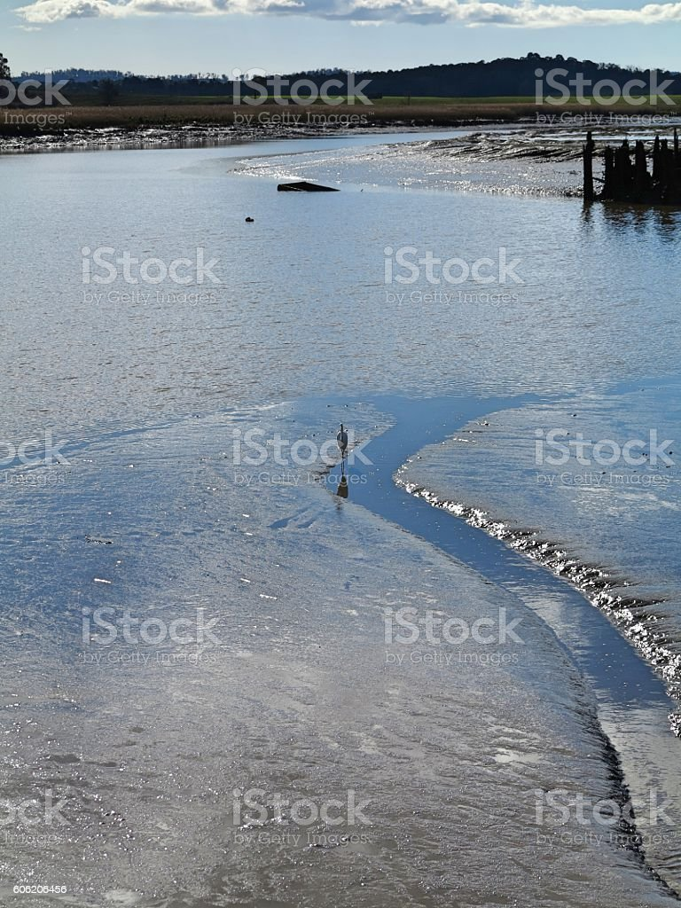 Crane during low tide stock photo