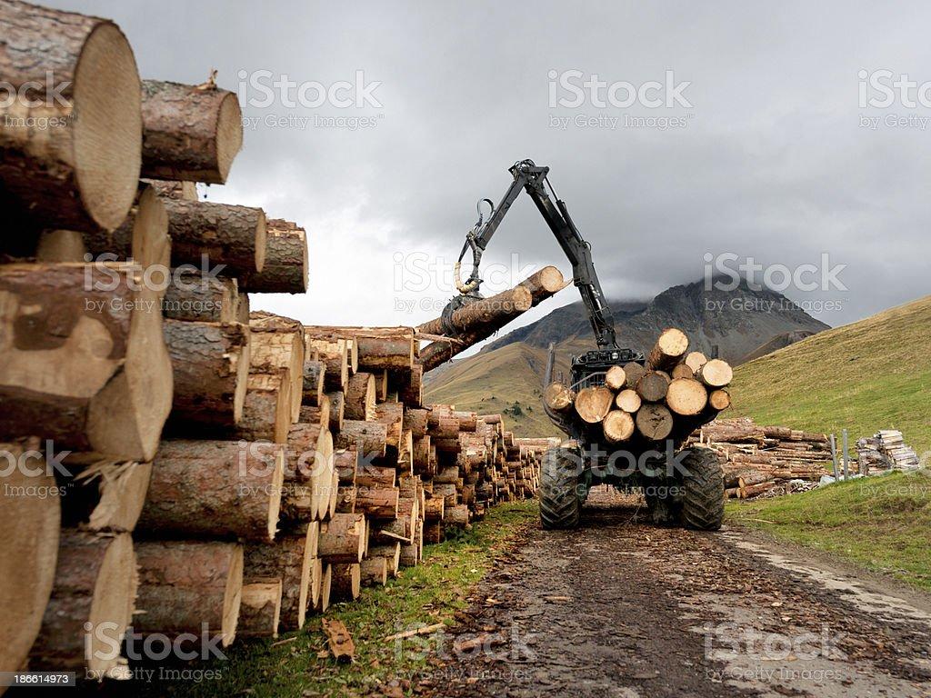 crane loading tree trunks on stack in mountain, Switzerland royalty-free stock photo