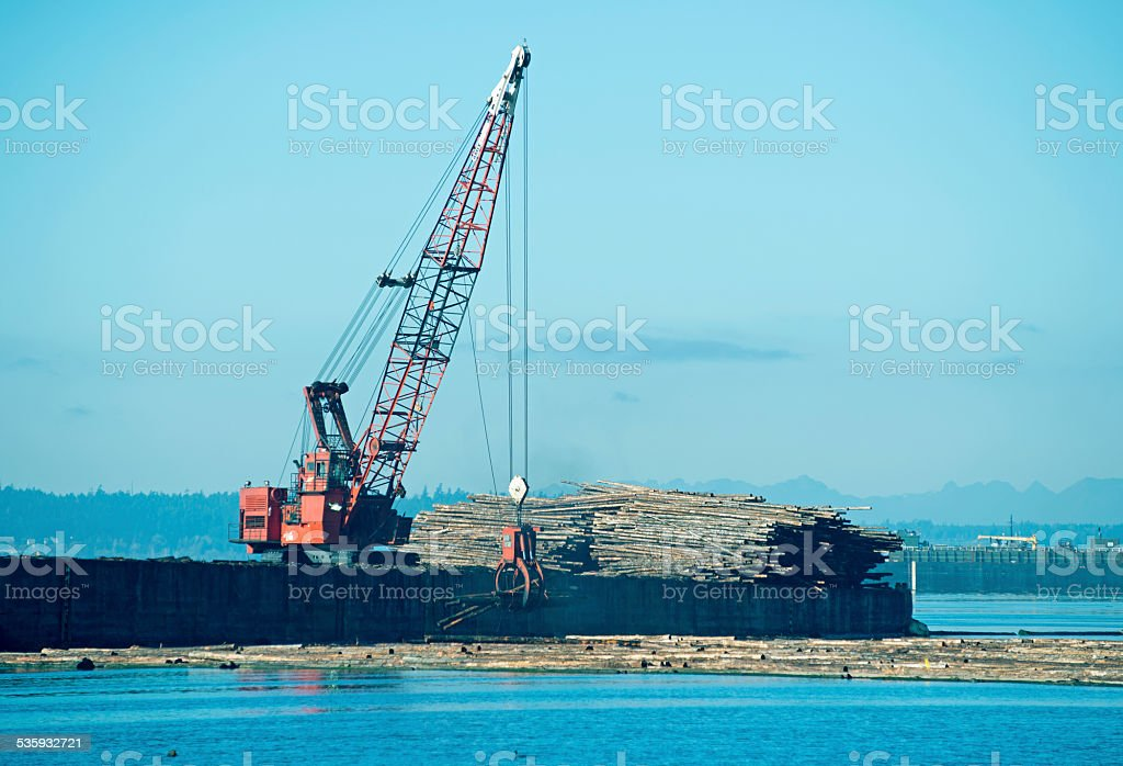 Crane lowering recently harvested logs into water in Tacoma WA stock photo