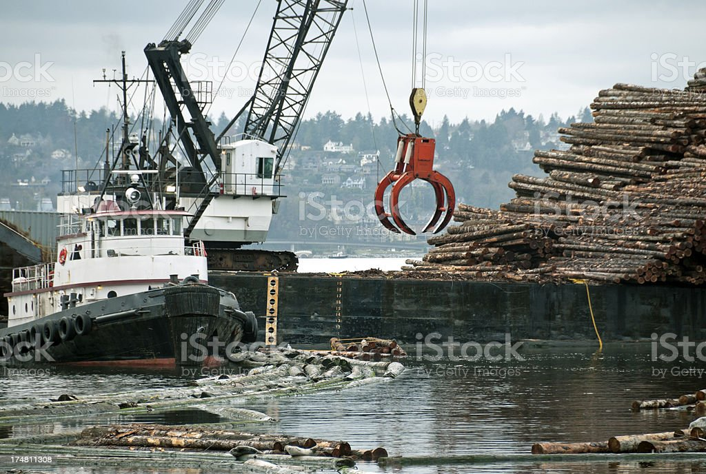 Crane moving raw timber from water onto barge royalty-free stock photo