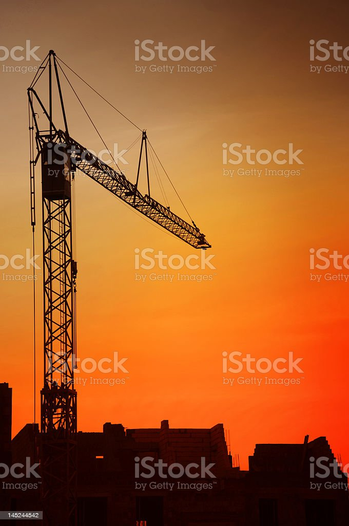 Crane on the sunset royalty-free stock photo
