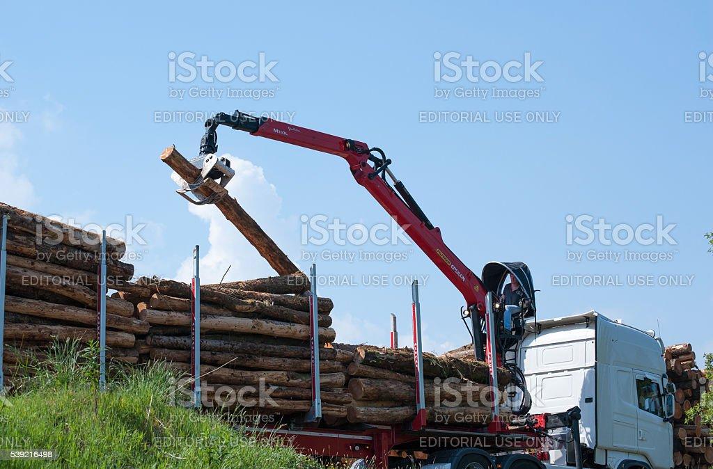Crane operator loading logs on to truck stock photo