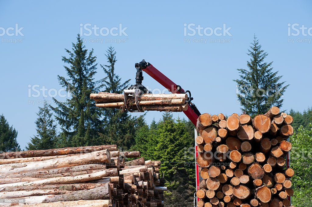 Crane operator loading logs on to truck stock photo