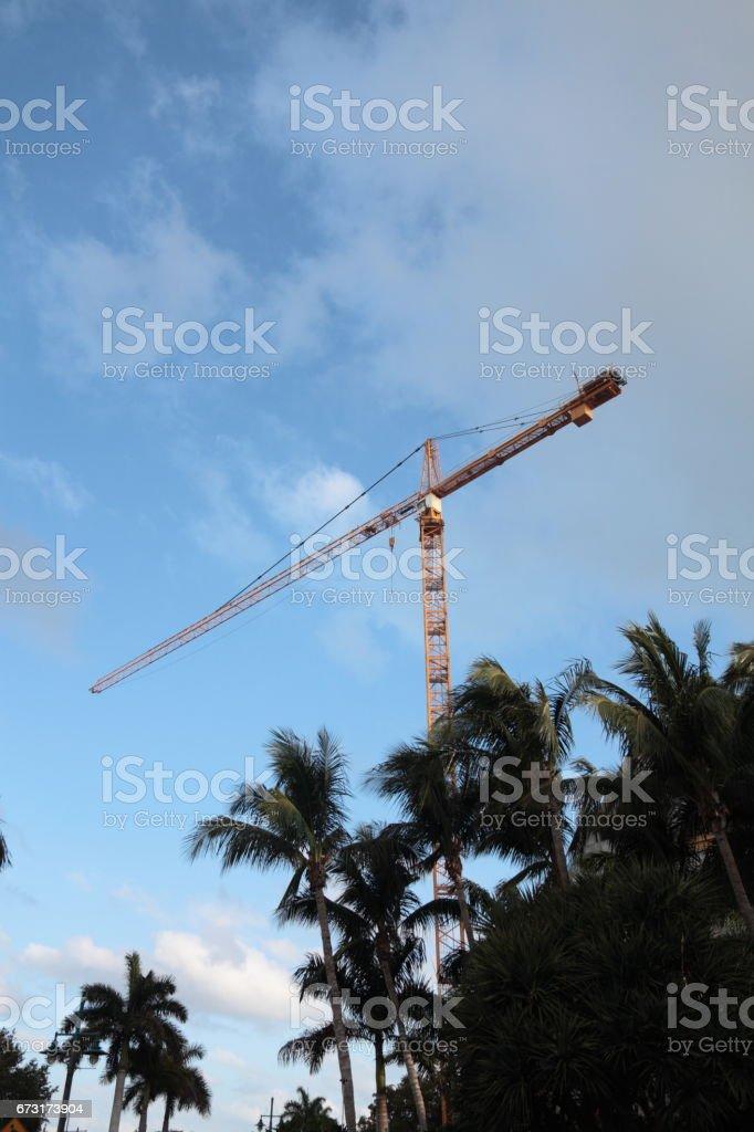 Crane. stock photo