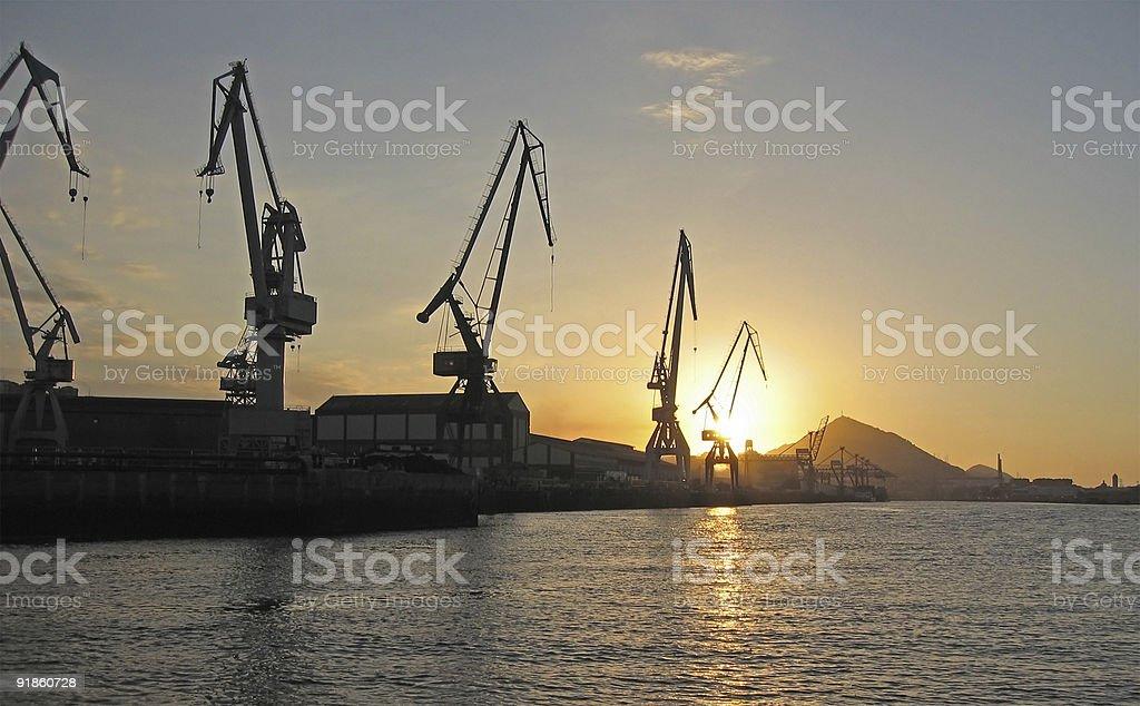 Cranes at Sunset stock photo