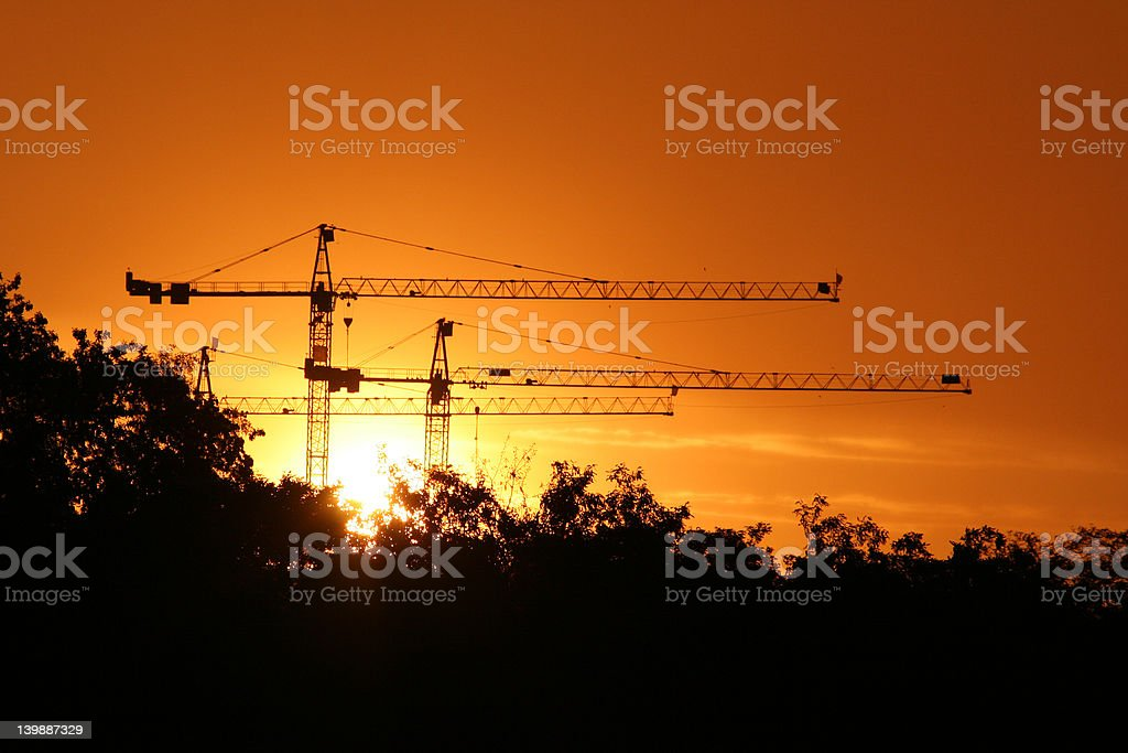 Cranes in sunset royalty-free stock photo