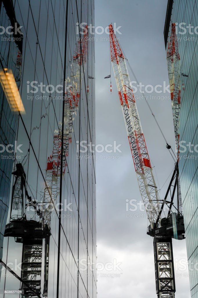 Cranes with its reflection stock photo