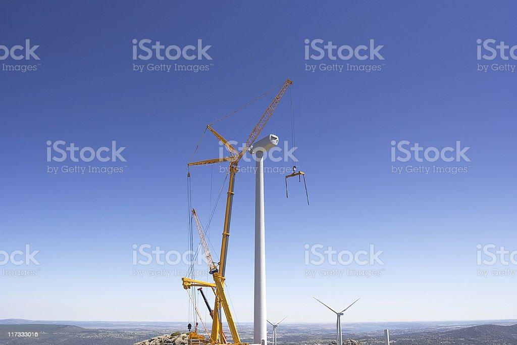 Cranes working stock photo