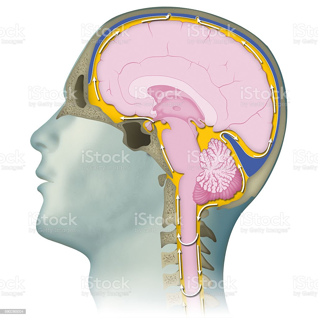 Craniosacral therapy stock photo