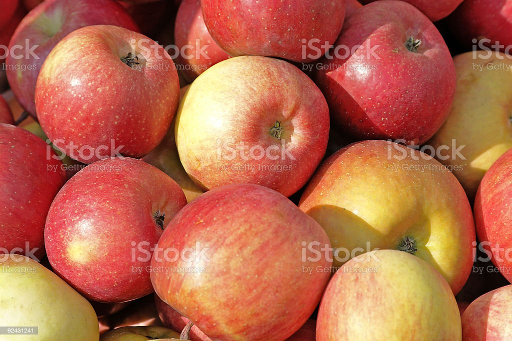Crate of Cameo Apples at Farmer's Market - Close-Up View stock photo