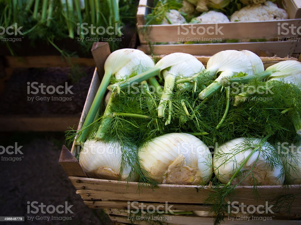 Crate of Fresh Fennel at Outdoor Market, Italy stock photo