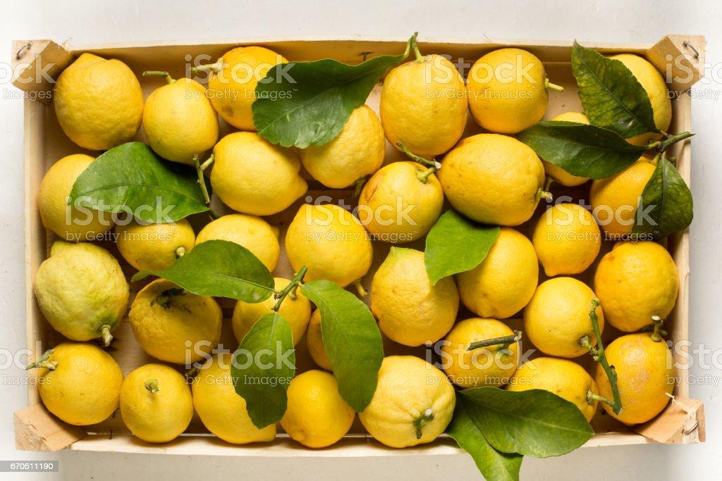Crate of lemons stock photo