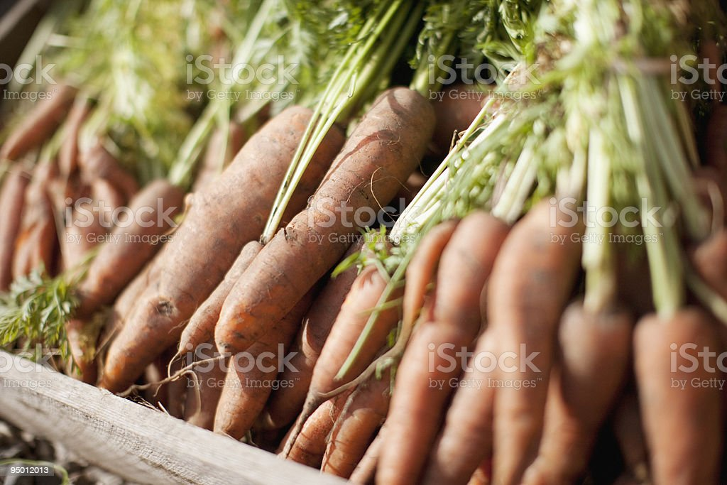 Crate of organic carrots royalty-free stock photo