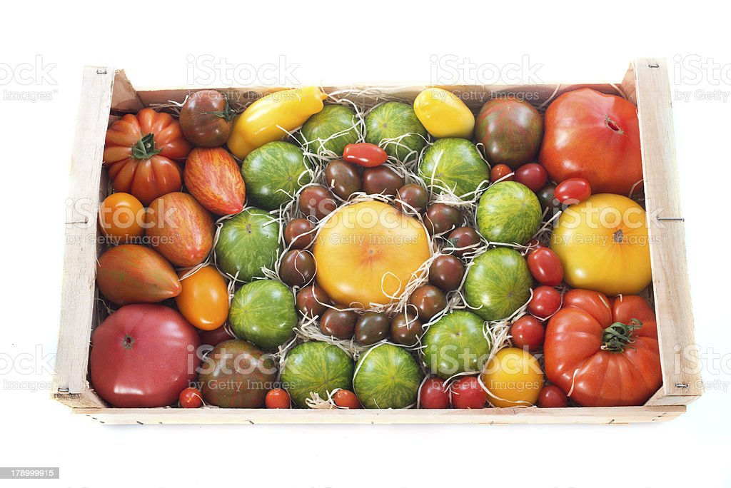 crate of tomatoes stock photo
