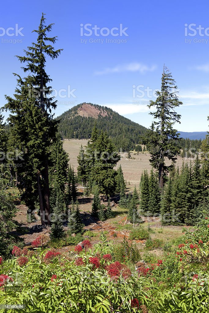 Crater Lake National Park, Oregon royalty-free stock photo