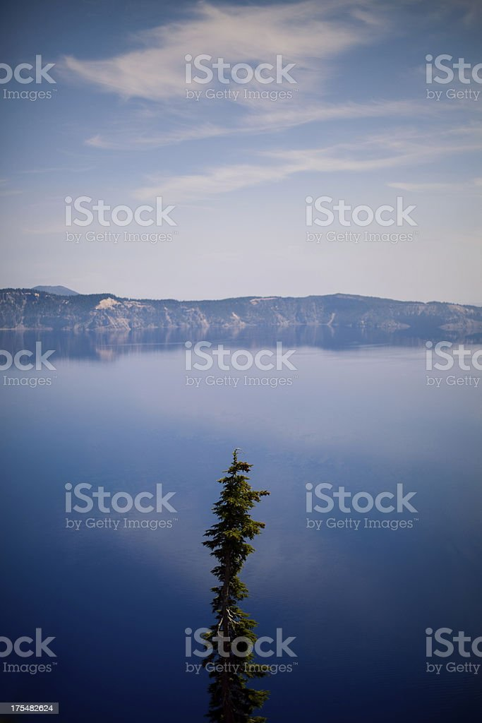 Crater Lake Oregon Deep Blue Color and Tree stock photo