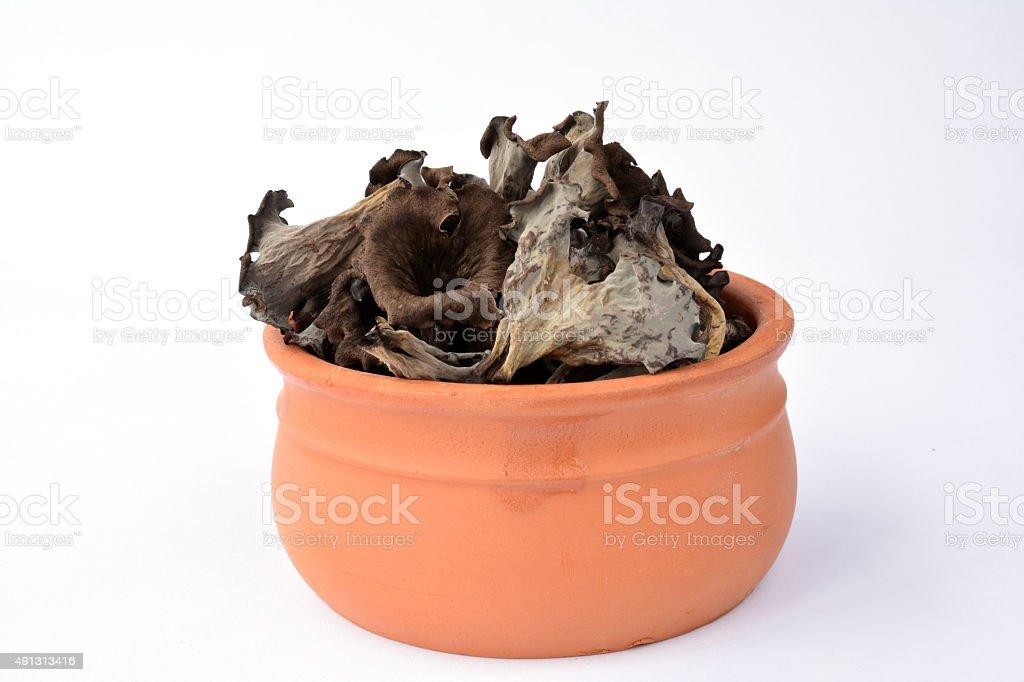 Craterellus cornucopioides in clay bowl stock photo
