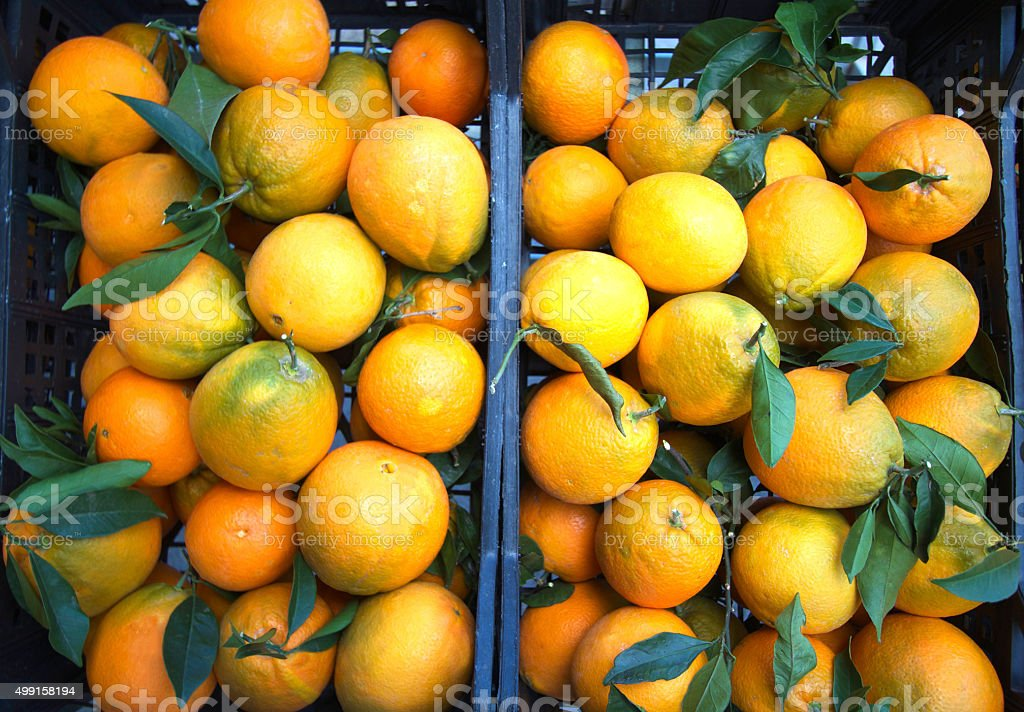 Crates of Freshly-Picked Oranges with Leaves Attached, Italy stock photo