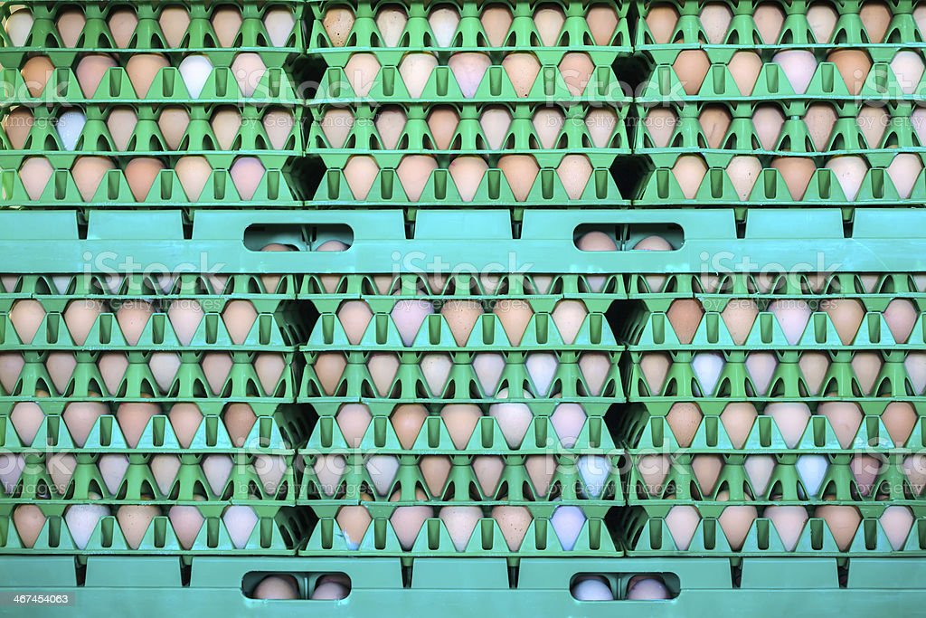 Crates with fresh eggs on an organic chicken farm stock photo