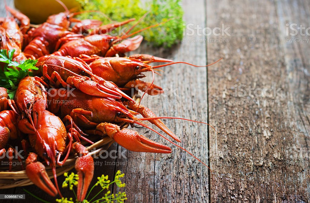 crawfish on wooden background stock photo