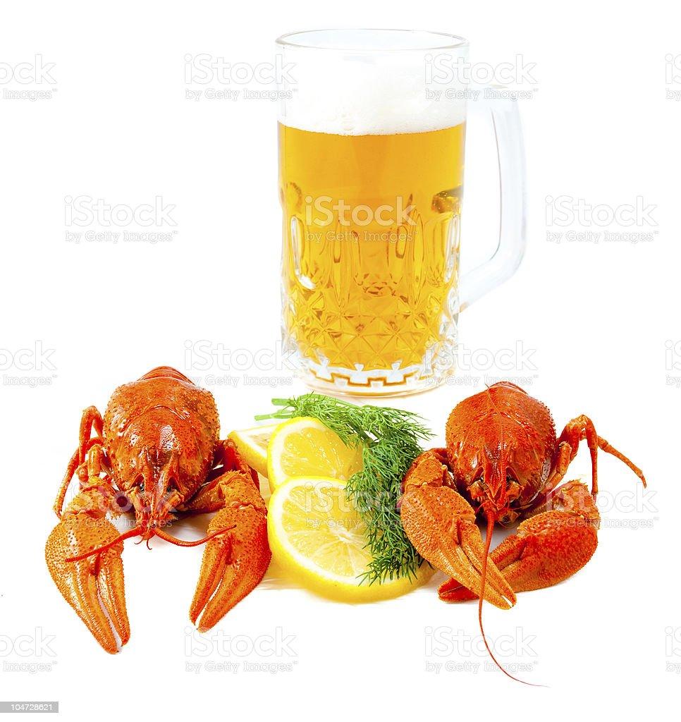 Crawfishes and mug of beer royalty-free stock photo