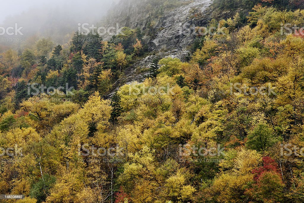 Crawford Notch State Park stock photo