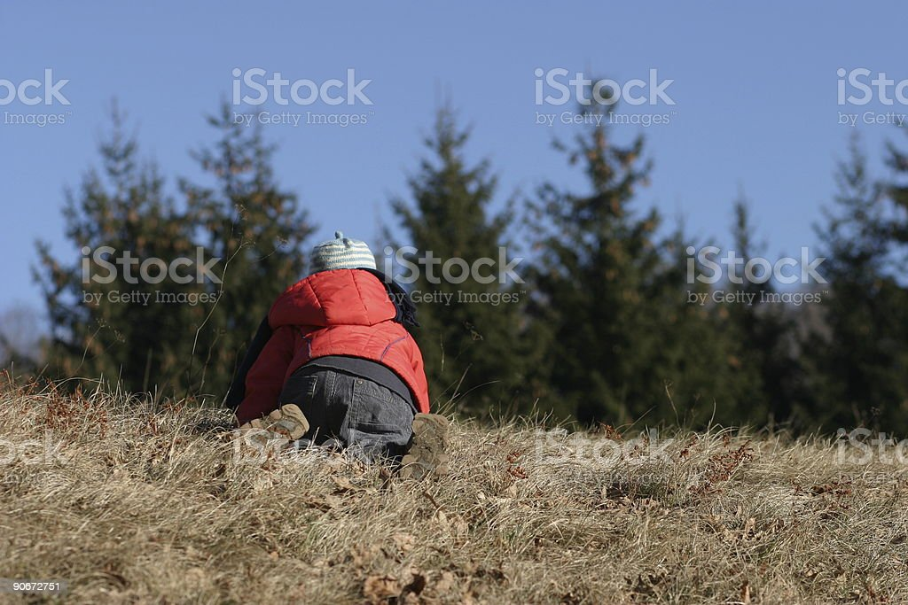 Crawling around royalty-free stock photo